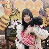 養蜂場ヽ(。・ω・。)ノ佐藤亜海の画像