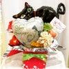 和歌山の保護猫カフェ猫の道草様@nekonomichikusa_ Open祝いに....の画像