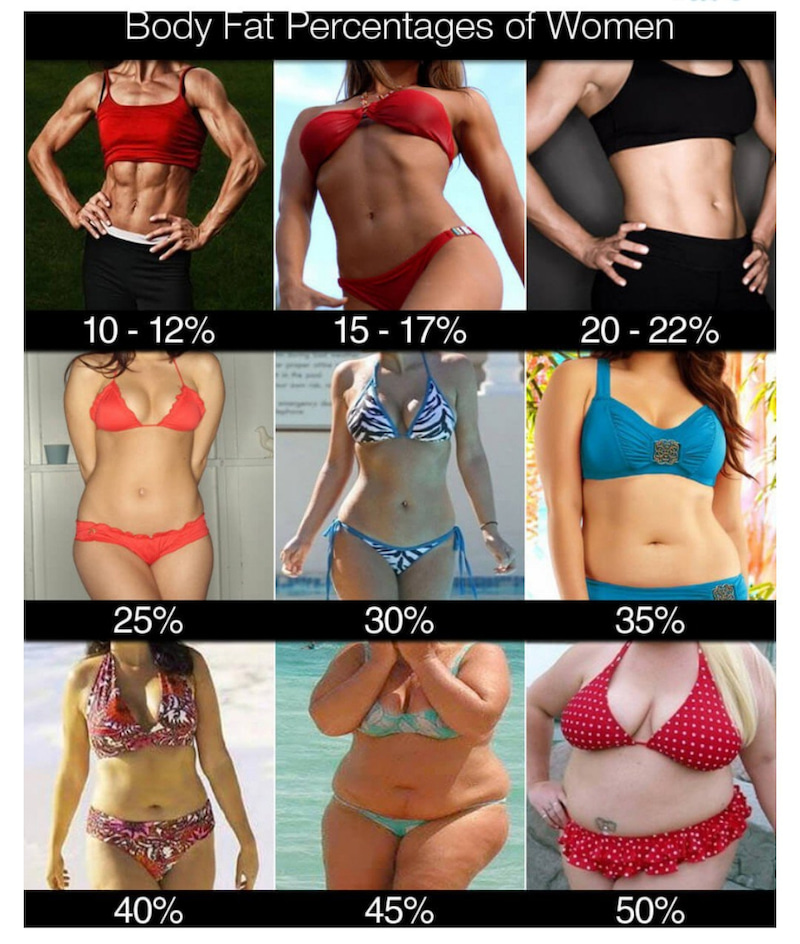 体 脂肪 率 女性 見た目