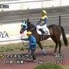 名古屋競馬デビューの画像