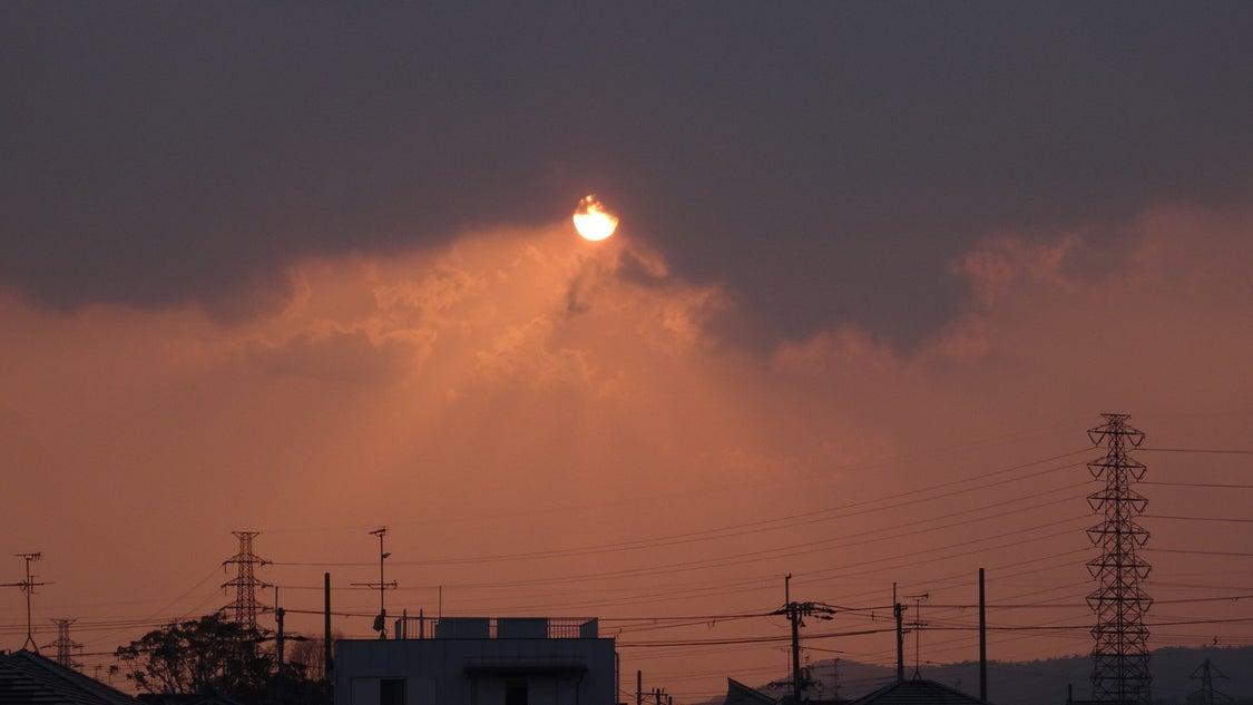 3月26日の夕方散歩ですよ~♪の記事より