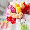「なりたいわたし」のタネを蒔いてみよう♡!の画像