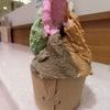 新元号はアイスを食べながら@ルチアーノ ビオ 銀座の画像