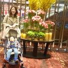 東京會舘でマロンシャンテリーを食べに行こう♪の記事より