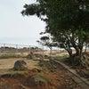 五島列島の野崎島にある沖ノ神嶋神社!巨石の王位石へ★ その2の画像