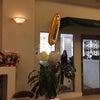 STUDIO ONE UP 1周年記念パーティーでえほんライブ♪の画像