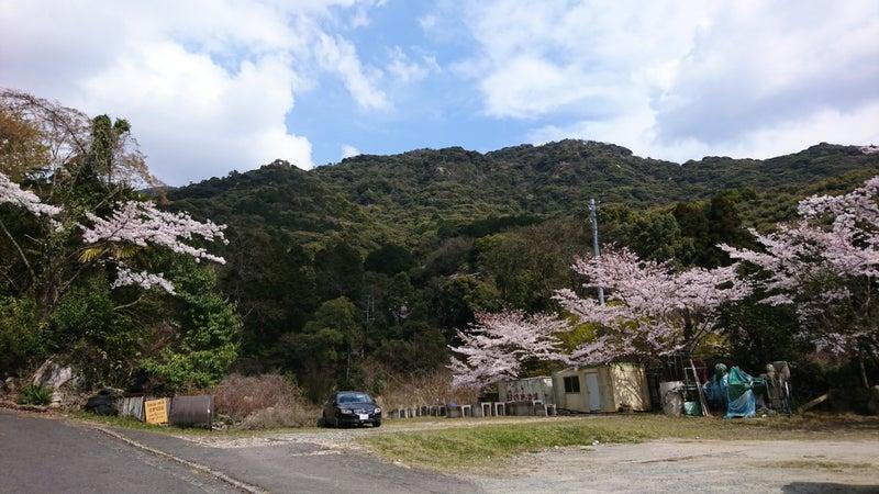 福智山登山(虎尾桜) | まさる家のトイストーリー~バーデンに揺られて~