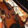 いよいよヴァイオリンクラスレッスンスタートの画像