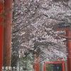 竹中稲荷神社の画像