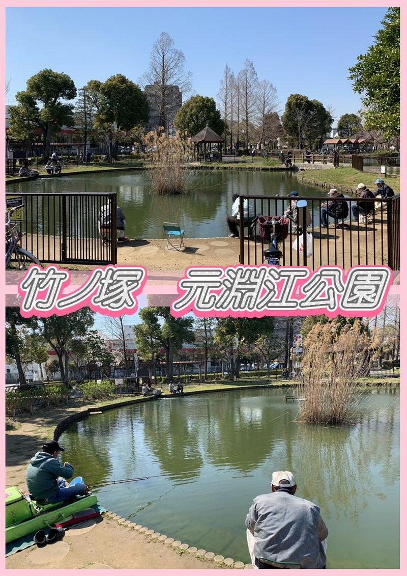 とんでんの塩辛☆桜を観に竹ノ塚の元淵江公園に行って来ました!タイ古式&足つぼ&オイルマッサージ7