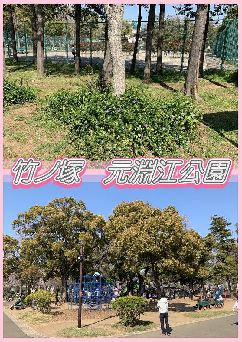 とんでんの塩辛☆桜を観に竹ノ塚の元淵江公園に行って来ました!タイ古式&足つぼ&オイルマッサージ6