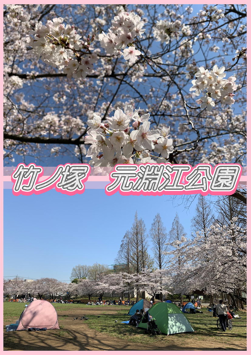 とんでんの塩辛☆桜を観に竹ノ塚の元淵江公園に行って来ました!タイ古式&足つぼ&オイルマッサージ4