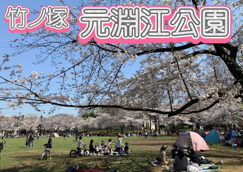 とんでんの塩辛☆桜を観に竹ノ塚の元淵江公園に行って来ました!タイ古式&足つぼ&オイルマッサージ0