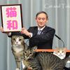 新元号が令和に決定しましたが【猫和】現在検討中??wの画像