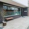 ✨ 「ボナペティ フレンチレストラン」  JR和歌山駅東口の画像