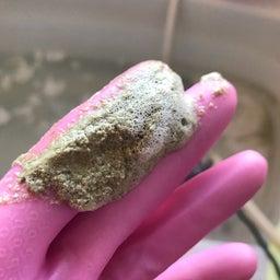 画像 17年使用した風呂釜で、追い焚きすると汚れが出てくる の記事より 7つ目