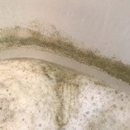 画像 17年使用した風呂釜で、追い焚きすると汚れが出てくる の記事より 6つ目