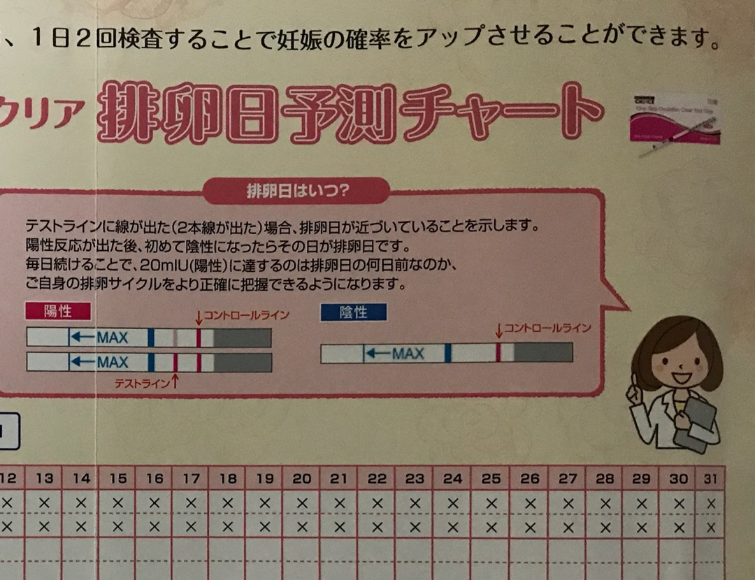 排卵検査薬 陽性 次の日