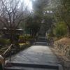 """塩釜神社 """"丁度いい""""にリセットの画像"""