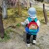 岡崎城に遊びに行きました!の画像