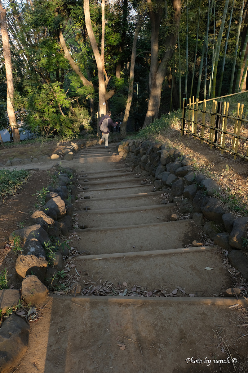 本門寺公園の階段 | 東京の階段ウォッチング