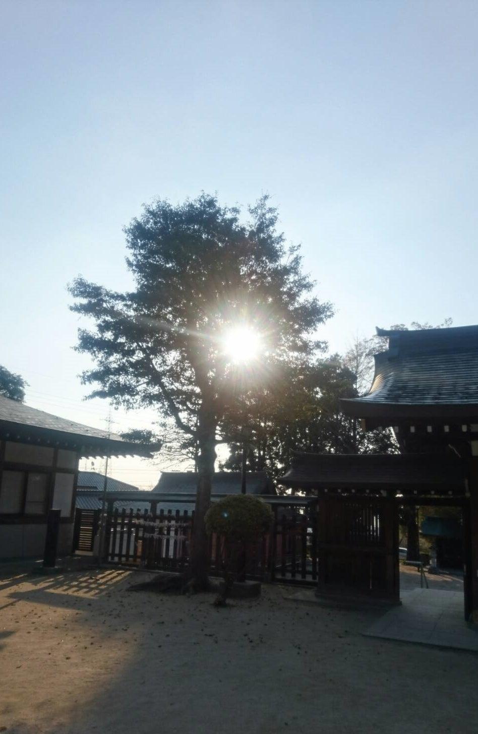 【メディア掲載】広島経済レポート3150号(4/11号)「ひとやすみ」欄に掲載されました!の記事より
