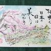 東京は面白い・・・・No.1474の画像