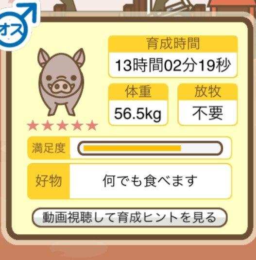 ミックス 養豚 場