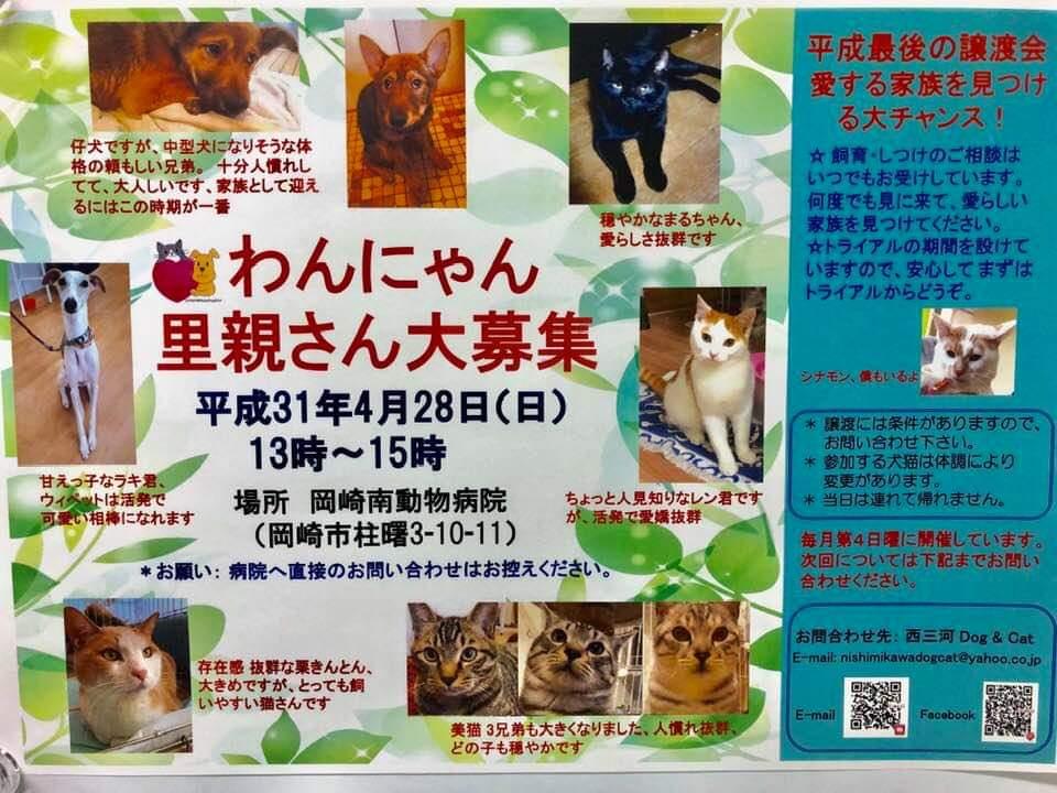 【拡散希望★岡崎市】譲渡会のお知らせです | 西三河 Dog & Cat ...