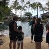ハワイ④の画像