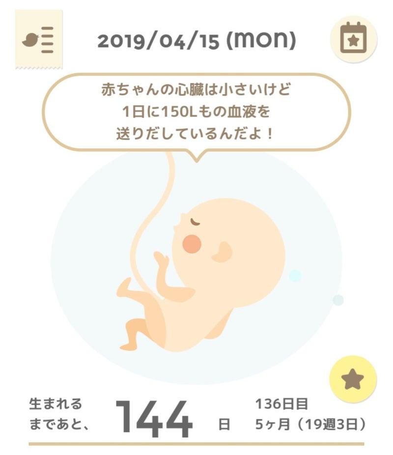 妊婦 口唇 ヘルペス 妊娠中に性器ヘルペスを発症赤ちゃんへの影響は?