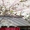ありがとうございました。敦賀市の花換え祭り出店が終了しました。の画像