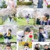 春の撮影風景、たっぷり!!