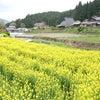 ☆京都リトリート~寂光院から三千院の画像