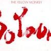 八咫烏 ❤︎ 八咫烏式 和麺 〜春の歌〜 +レアチャーシューのちらし寿し+仁淀川山椒の和え玉の画像