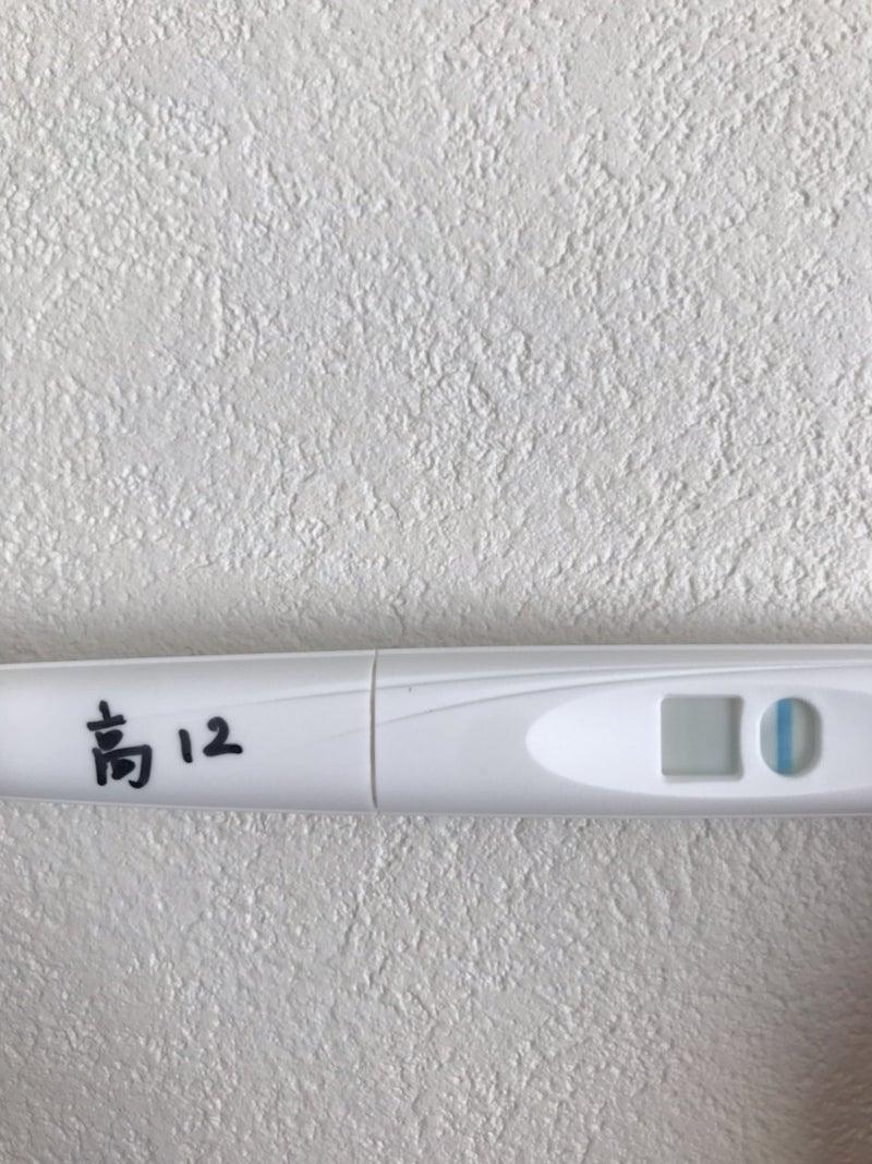 妊娠 陰性 高温期12日目 フライング