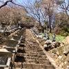 大山詣りの画像