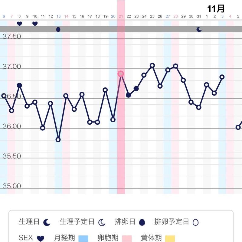 基礎 ブログ 妊娠 体温