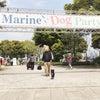 Marine Dog Party に行って来ましたの画像
