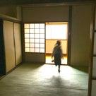 ポキナ☆実店舗に開業に向けて動きだします♪の記事より