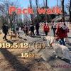 2019.5.12(日) M-side PACK WALK〜54〜参加者募集中!の画像