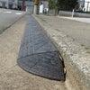 段差プレートと徳島の春の画像