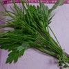 日本のハーブセラピスト講座の画像