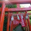 ☆マダムのご縁足リトリート(2)ー鎌倉の画像