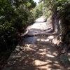 弥山散策の画像