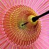 蛇の目傘2019|蛇の目《無地》4種|番傘とは似て非なる高級化粧和傘。失われつつある和装小物。の画像