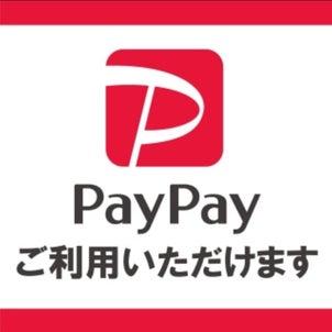 PayPay!ペイぺ!PayPay!の画像