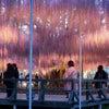 【栃木県】あしかがフラワーパーク!藤の饗宴 ライトアップの画像