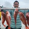 アカムツ釣果の続き写真の画像