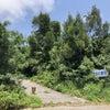 野原岳の霊石 ~宮古島~の画像